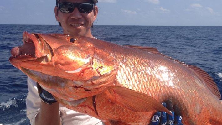 puerto-vallarta-sport-fishing6