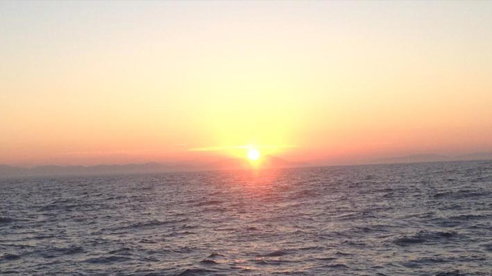 puerto-vallarta-sport-fishing9