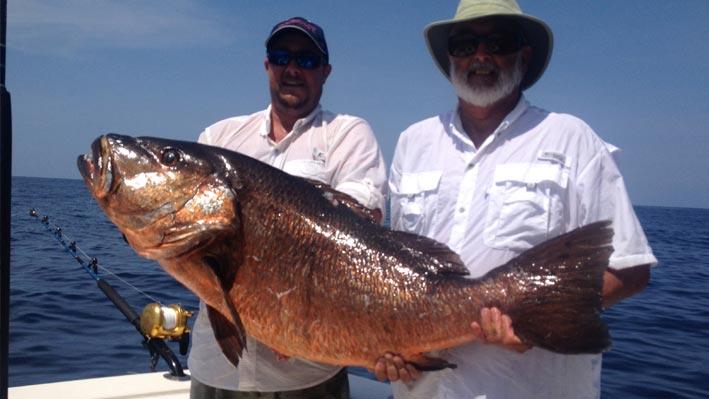 puerto-vallarta-sportfishing